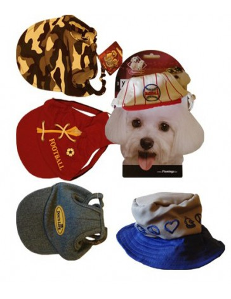 5 chapeaux casquettes (taille S) pour le chien