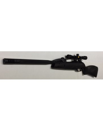 PACK CARBINE LUNETTE GAMO REPLAY
