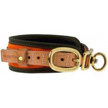 Collier chien de sang Niggeloh orange fluo