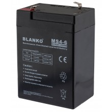 Batterie rechargeable MS4-6